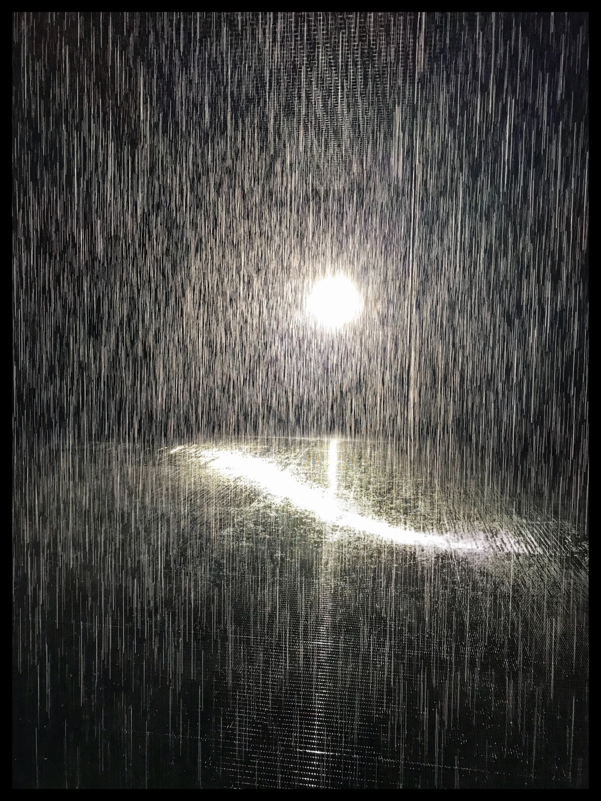 The Rain Room, Sharjah ArtFoundation