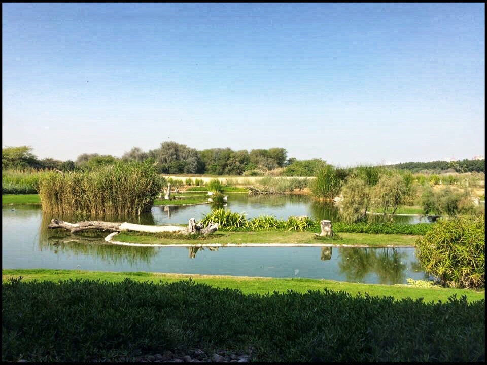 Wasit Nature Reserve